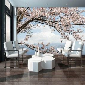 Fototapet - Flori de cireș (152,5x104 cm), în 8 de alte dimensiuni noi