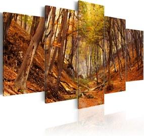 Tablou - Orange autumn 100x50 cm