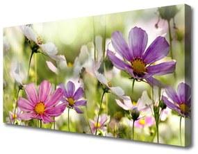 Tablou pe panza canvas Flori Natura Roz Galben Verde
