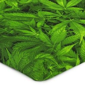 4Cearșaf pat Home Aromatica, bumbac, 90 x 200 cm , 90 x 200 cm