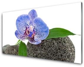 Tablou pe sticla Flower Floral Purple Verde