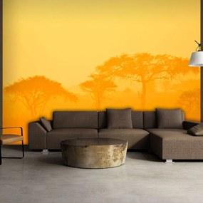 Fototapet - Orange savanna 200x154 cm