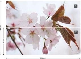 Fototapet GLIX - So Delicate + adeziv GRATUIT Tapet nețesute - 254x184 cm