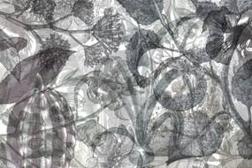 Tapet negru/alb din hartie cu fibre de nailon Jelly Belly Plants Black White Rebel Walls