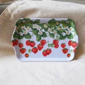 Tava Summer Fruits din melamina 13x21 cm