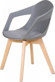 Set 2 scaune cu perna Chandra gri