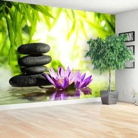 Fototapet Lotus Zen Piatra