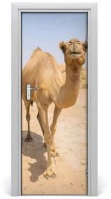 Autocolante pentru usi Autocolant UȘĂ adeziv cămilă în deșert