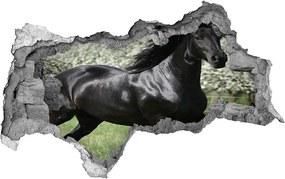 Fototapet 3D gaură în perete Flori cal negru