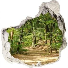 Fototapet un zid spart cu priveliște Drum forestier
