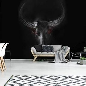 Fototapet - Taur (254x184 cm), în 8 de alte dimensiuni noi