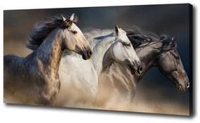 Print pe canvas Galopantă cai