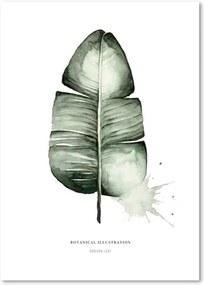 Poster Leo La Douce Banana Leaf, 21 x 29,7 cm