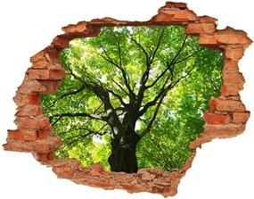 Autocolant un zid spart cu priveliște Pădure verde