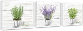 Tablou pe pânză - Variety of herbs 3x 27x27 cm