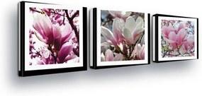 GLIX Tablou - Pink Flowers in the Passepartout 3 x 25x25 cm