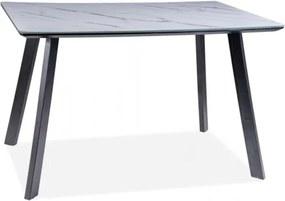 Masa din MDF, sticla si metal Samuel Alb / Negru, L120xl80xH75 cm