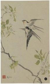 Poster multicolor din hartie 25x35 cm Swallows